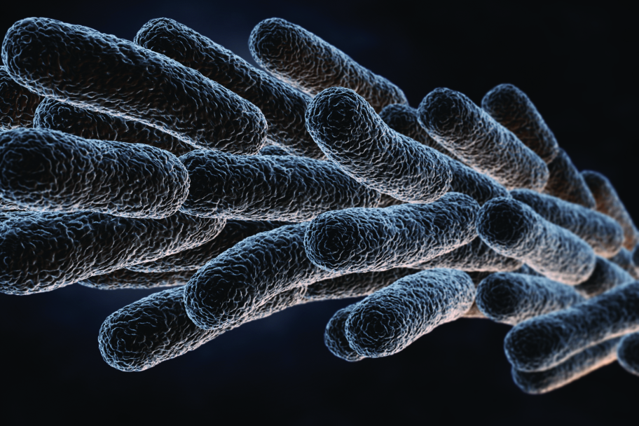 legionella-disease-risks